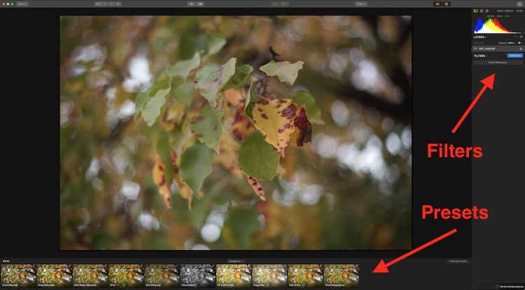 Mastering and Sharing One-Click Presets in Luminar