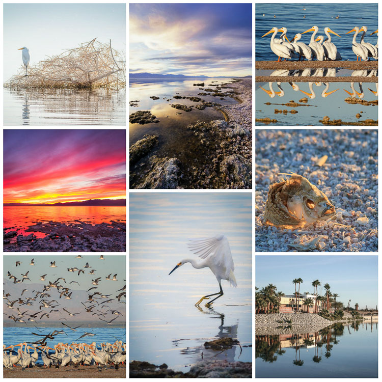 https://i1.wp.com/digital-photography-school.com/wp-content/uploads/2017/11/salton_sea_collage.jpg?resize=750%2C750&ssl=1