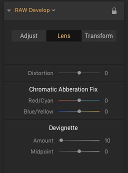 Cappuccino Luminar 2018 RAW Develop Settings Lens