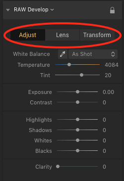 Luminar 2018 RAW Develop Filter Tabs