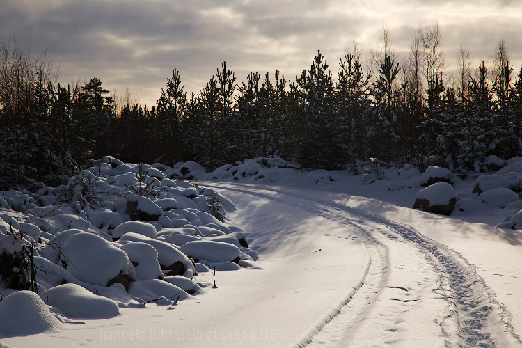01 winter photography tips