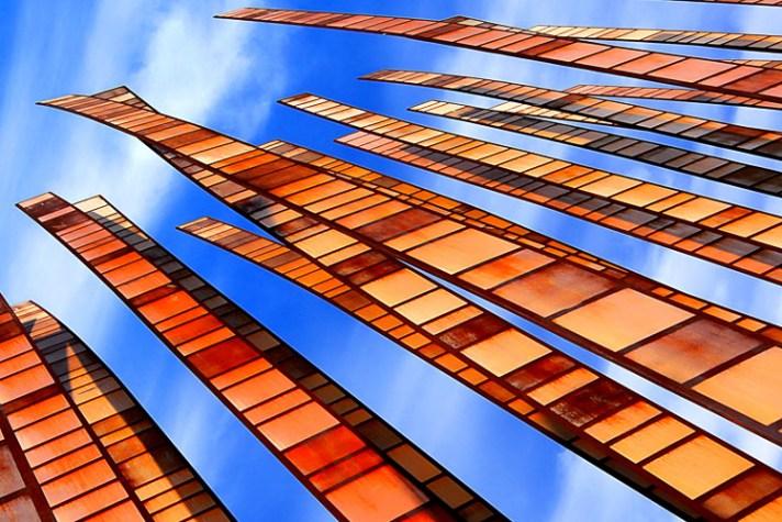竹林-风景摄影入门-4个针对初学者的简单提示