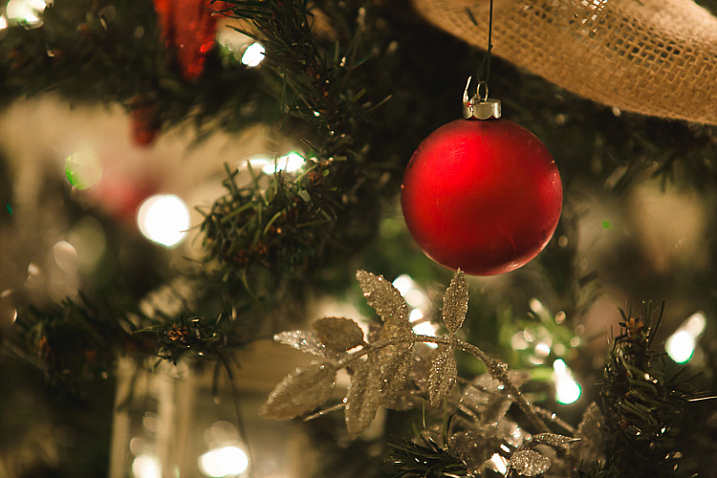 An image of a Christmas tree ornament with accurate focus - Focus Challenges and How Live View Can Help You Get Razor-Sharp Images