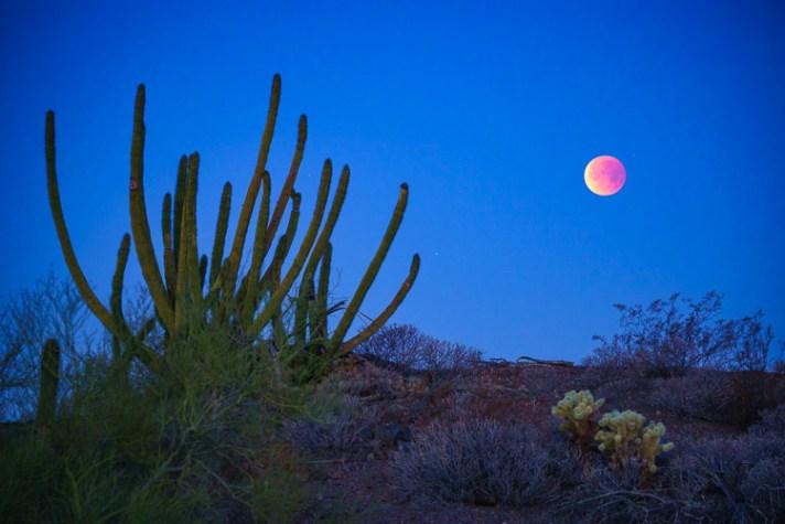 亚利桑那州阿霍的蓝色,鲜血,超级月亮,拍摄风景中月亮的3种技巧和技巧