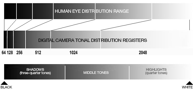 Eye Camera Distribution - Your Camera Sees Differently Than Your Eyes