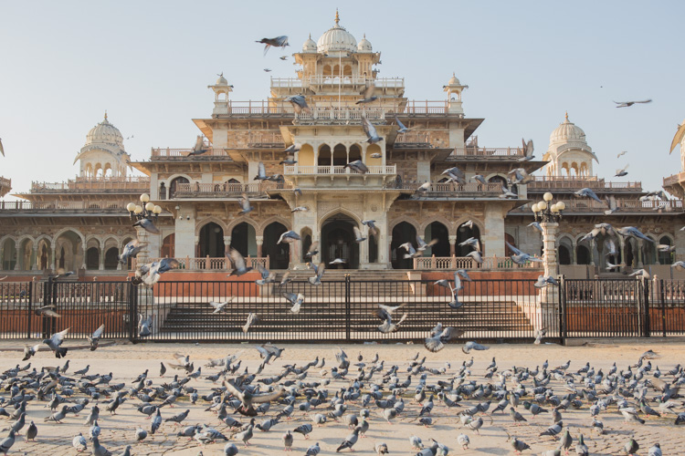 Albert Hall Jaipur India at Sunset with pigeons - Tips for Quick Photo Editing in the Field