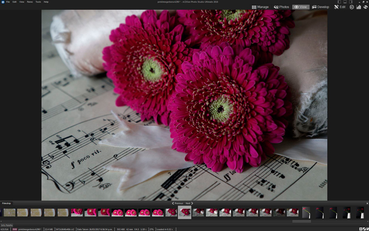 How to Edit Using Layers with ACDSee Ultimate Photo Studio 2018 - edited with basic adjustments