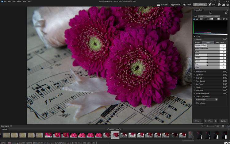 original image before editing - How to Edit Using Layers with ACDSee Ultimate Photo Studio 2018