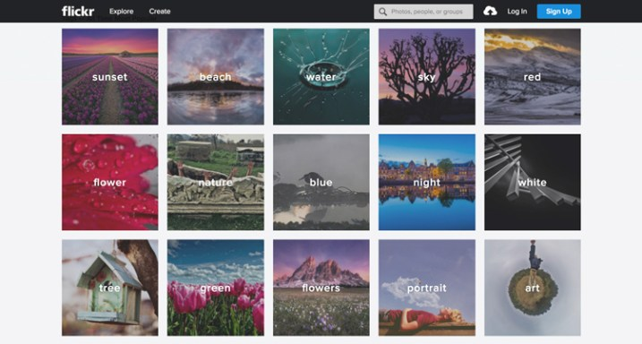 flickr free vs paid photography portfolio websites