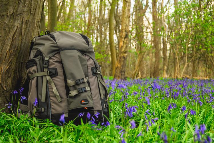 Wildlife photography camera bag