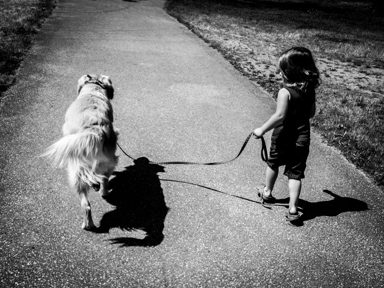 Walking the dog. How Conquer Your Fear of People as a Photographer