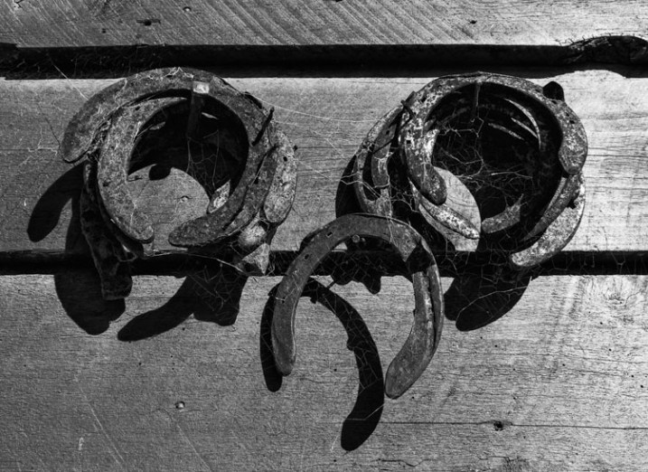 horse shoes in b/w - 9 Ways to Create Balance in Your Photography