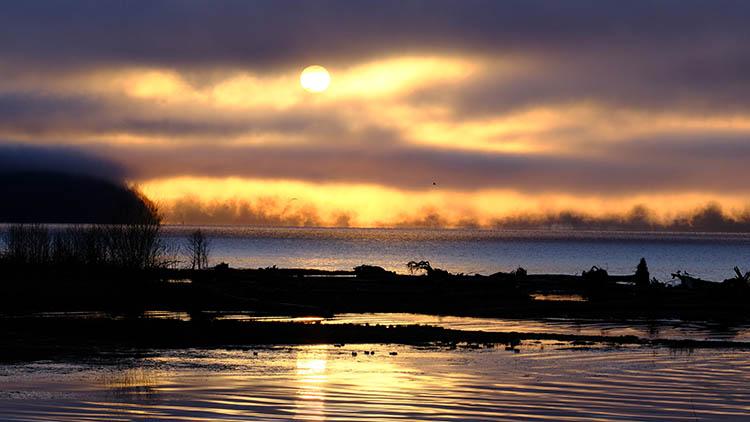 fujifilm x-h1 mirrorless camera - sunset shot