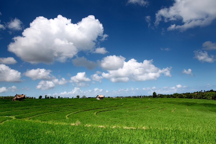 blue sky and a green field with a circular polarizing filter