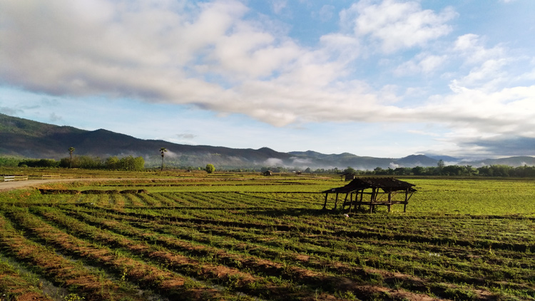 Northern Thailand landscape near Suan Sook Homestay, Doi Inthanon - improve your photography