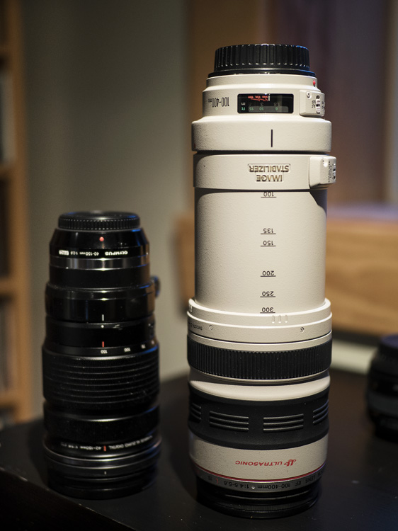 Making Sense of Lens Optics for Crop Sensor Cameras - different lenses