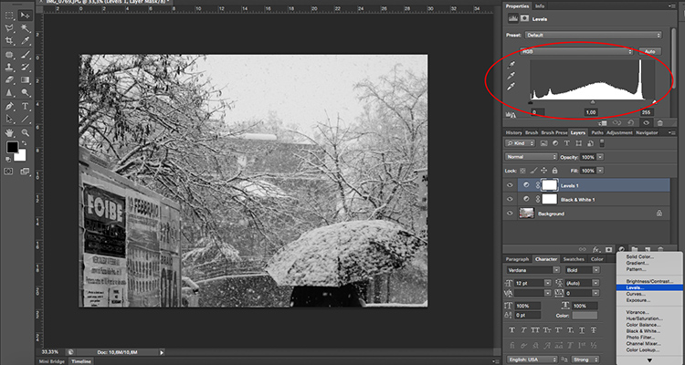 Adjustments Layer Levels Histogram Tonal Effects Photoshop Tutorial