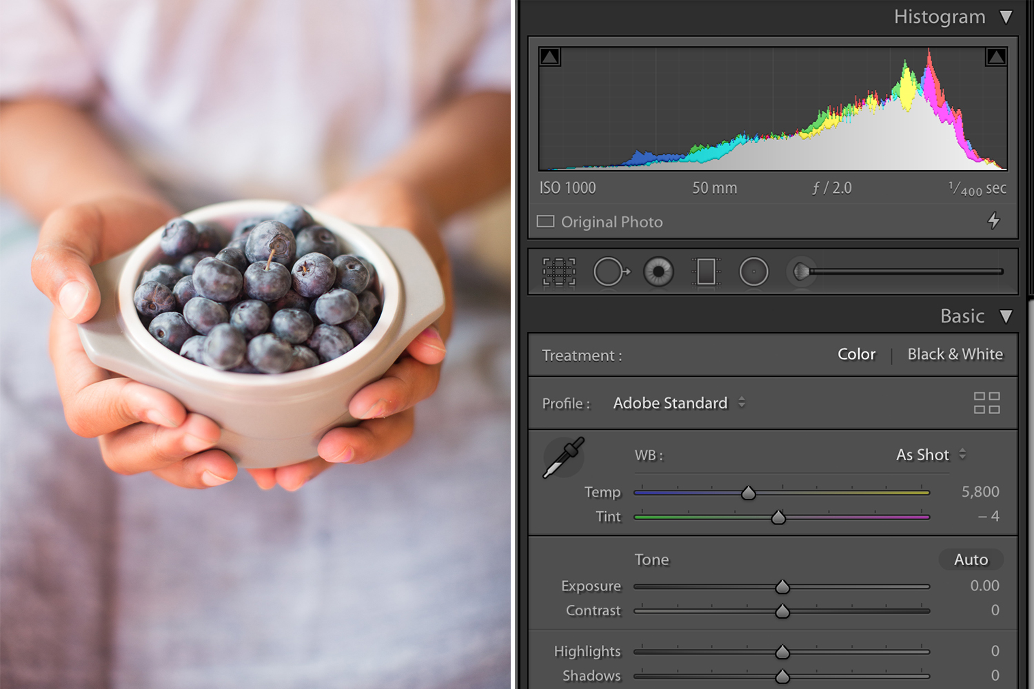 Color Adjustment in Lightroom Blueberries in a bowl Still Life Photo - How to Make Color Adjustments Using Tone Curves in Lightroom