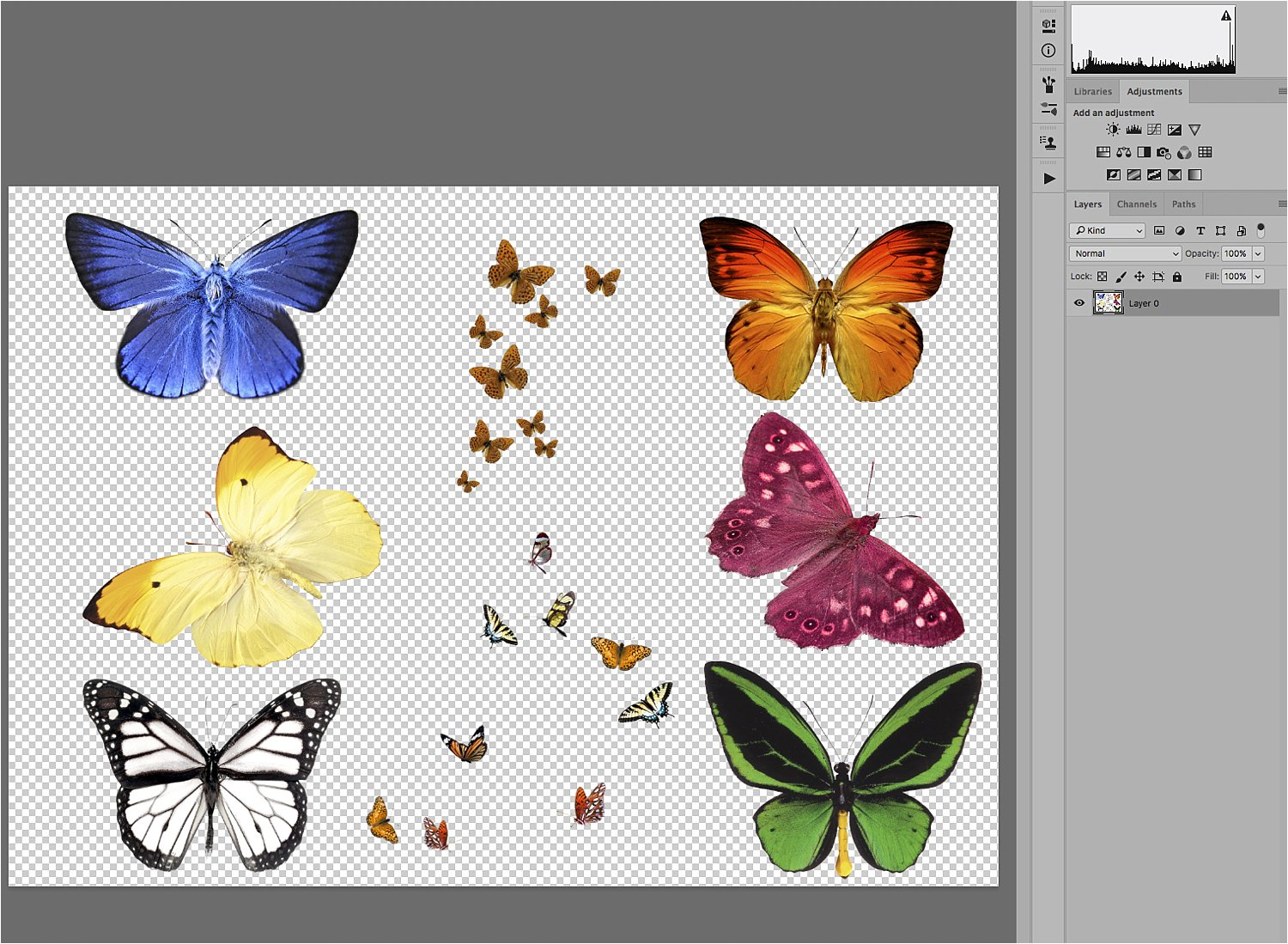 butterfly images - Basic Photoshop Tutorial - How to Add Creative Overlays to Your Portraits