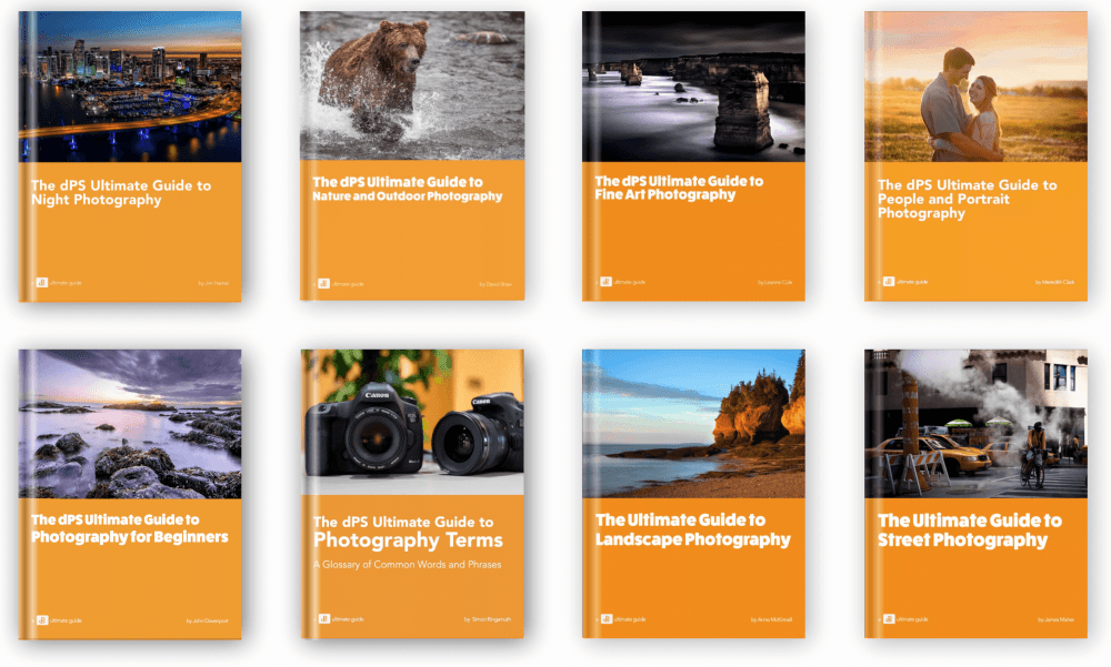 Photography ebook free guide to download portrait essential