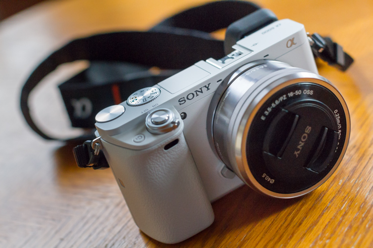 5 Questions Professional Photographers Hate and What You Can Ask Instead - small Sony camera