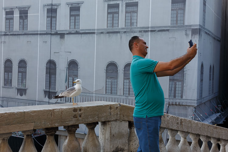 man taking selfie with a seagull - 10 Things You Can Learn About Photography from Elliott Erwitt