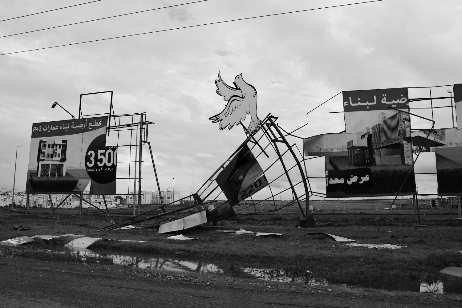Signs and advertisements after a storm. Tips for Taking Better Pictures from a Moving Vehicle