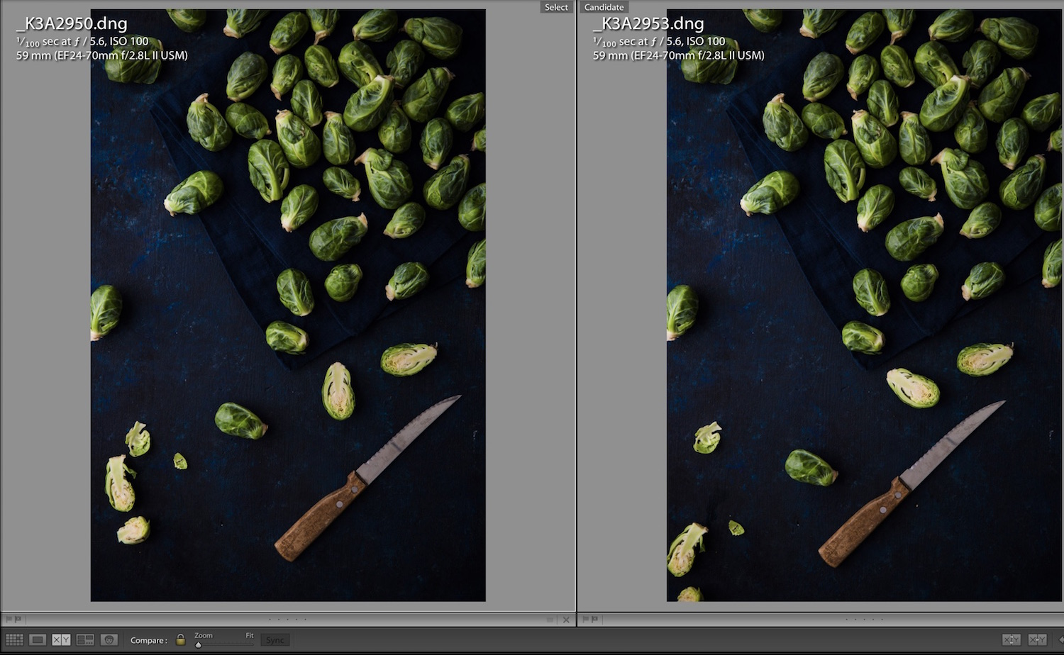 Compare View In Lightroom Classic