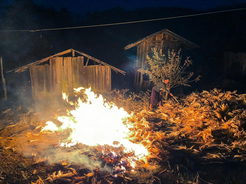 woman burning leaves - Documentary Photos