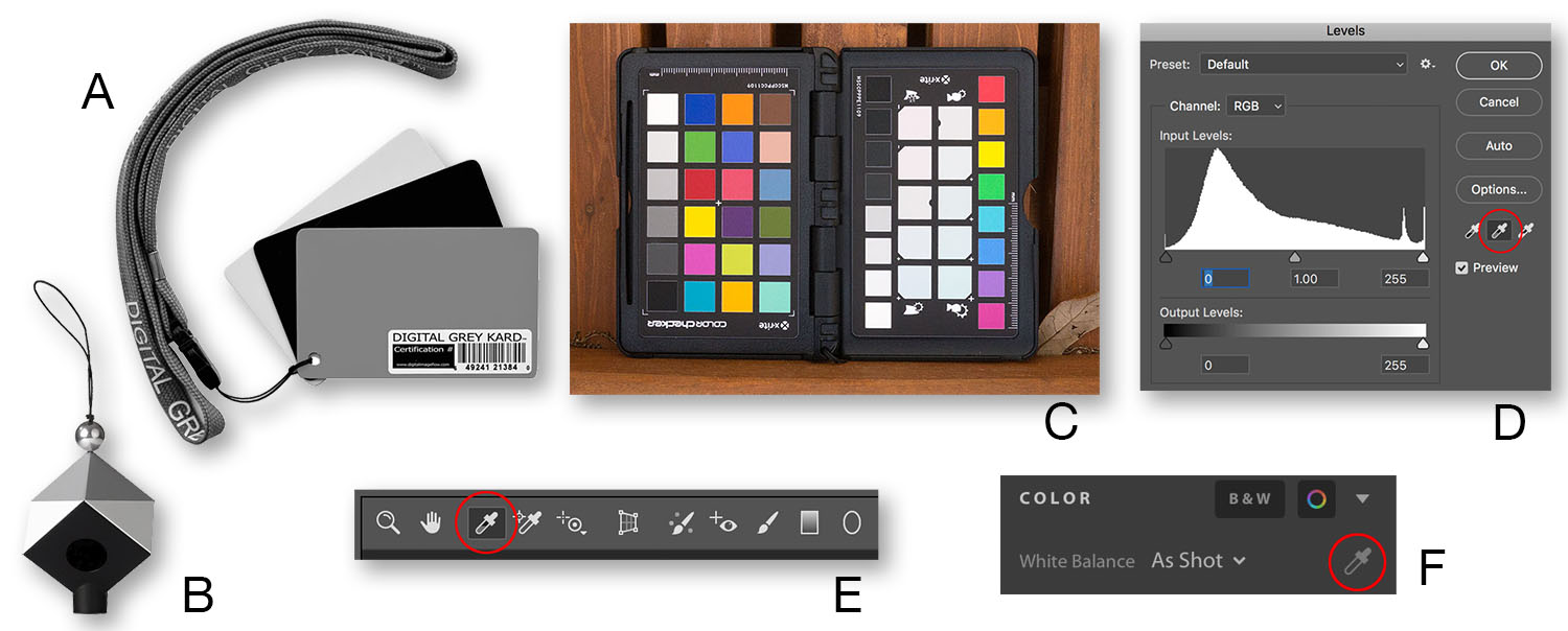 White Balance Tools - How Color Balance Can Kill Your Color