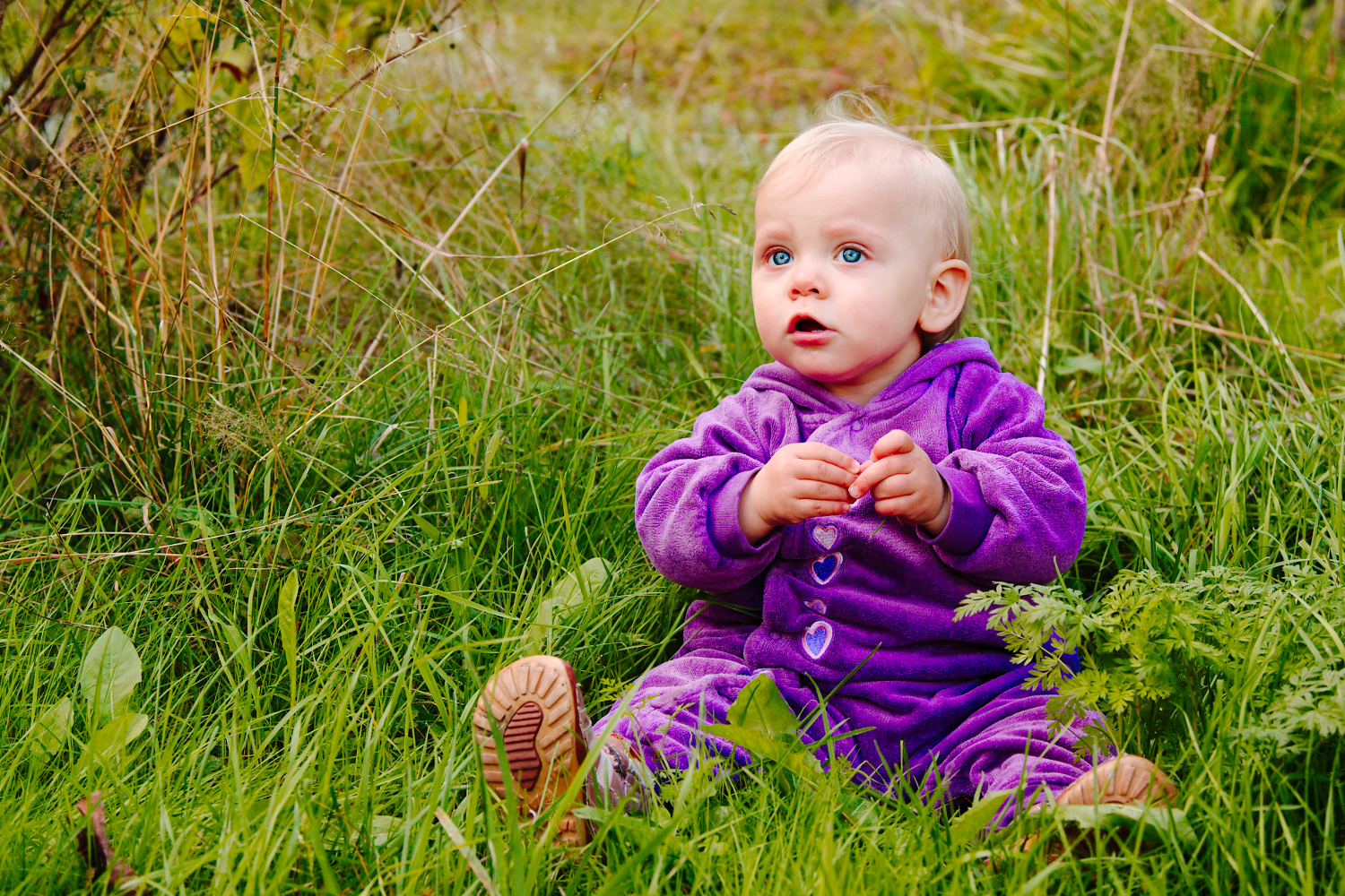 Portrait of child in the grass.