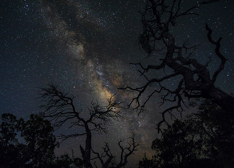 The Six Killers of Night Sky Photography (and how to avoid them)