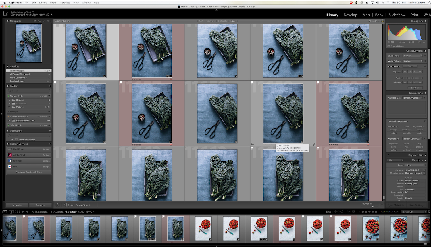 Grid View-Lightroom - How to Find for Your Photos in the Lightroom Catalog Using Filters