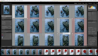 How to Find Your Photos in the Lightroom Catalog Using Filters