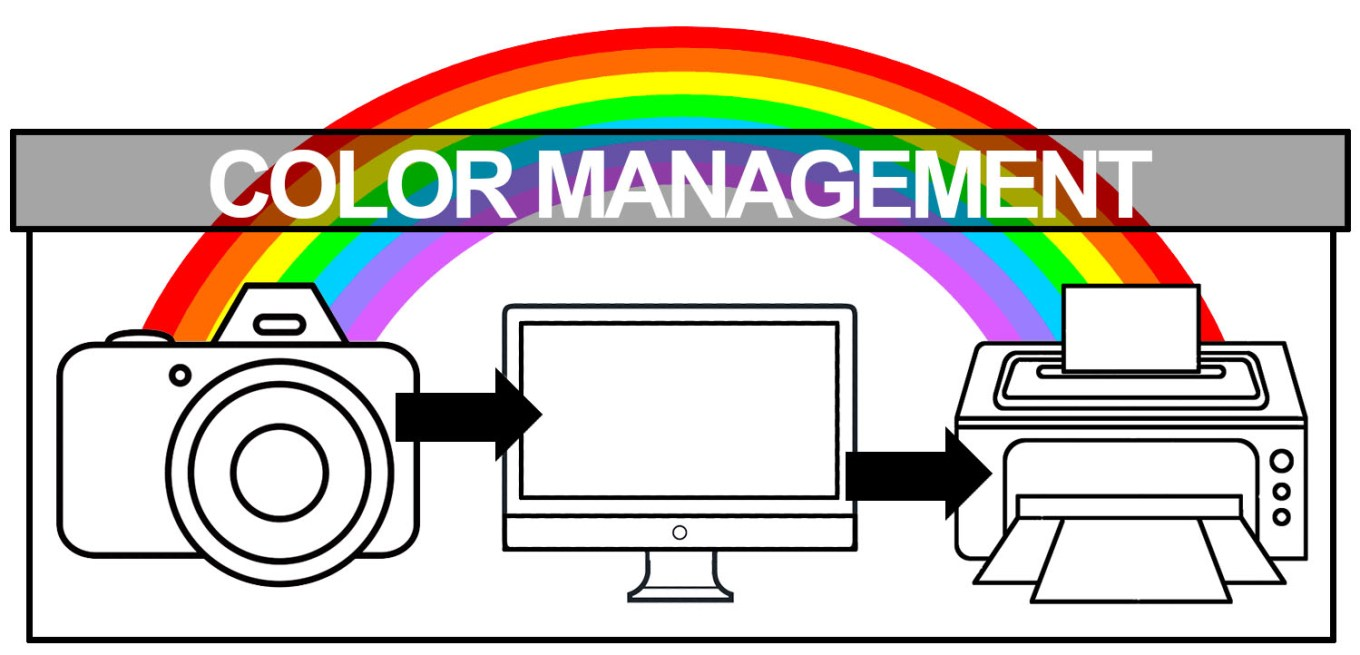 Color Management - Color Management