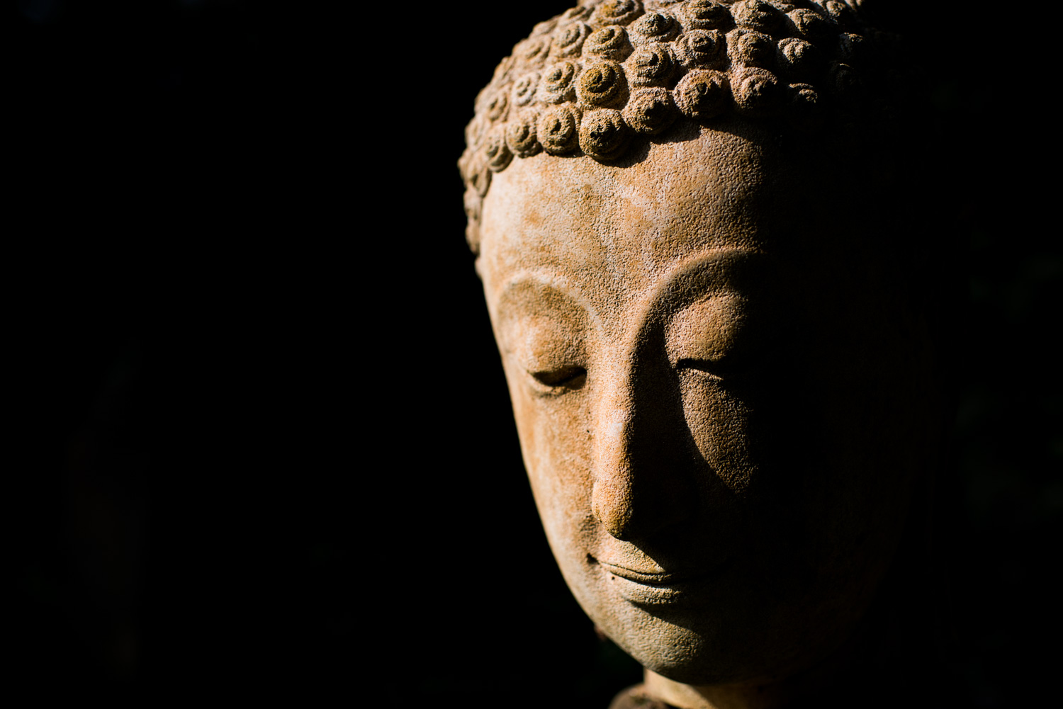 Buddha Face - dPS Writer's Favorite Lens: Why I Love My 35mm F1.4