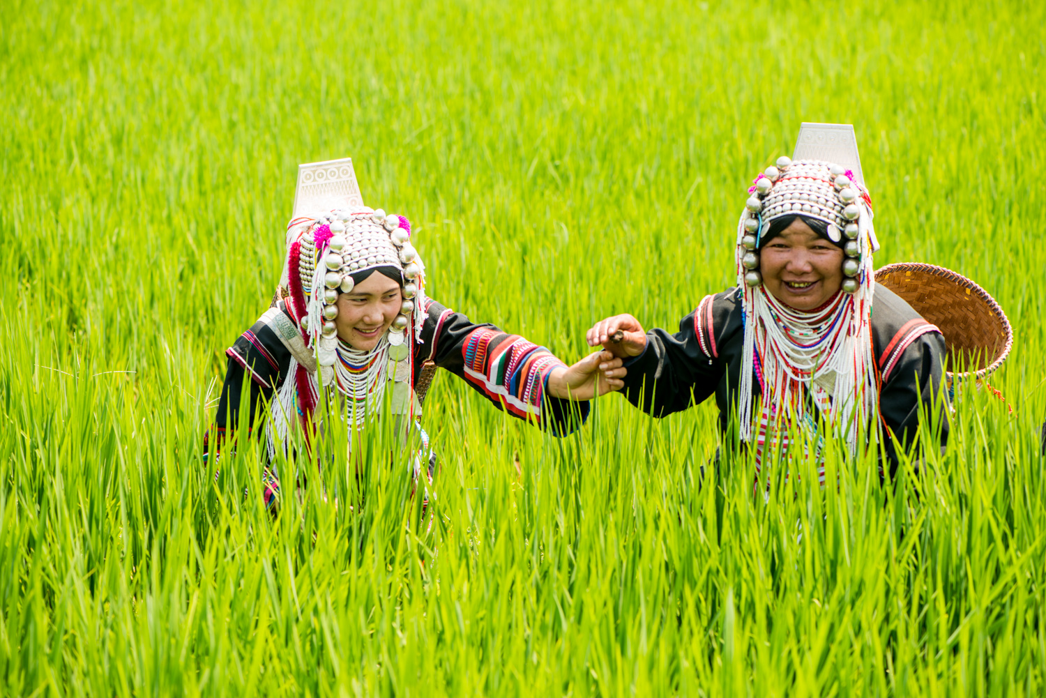 Two Akha women in a rice field -  7 Steps to Find Inspiration so You Can Create Phenomenal Photographs