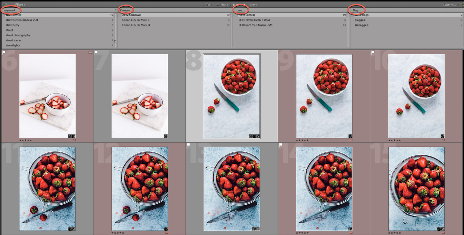 multiple Metadata Criteria in Lightroom - How to Find for Your Photos in the Lightroom Catalog Using Filters