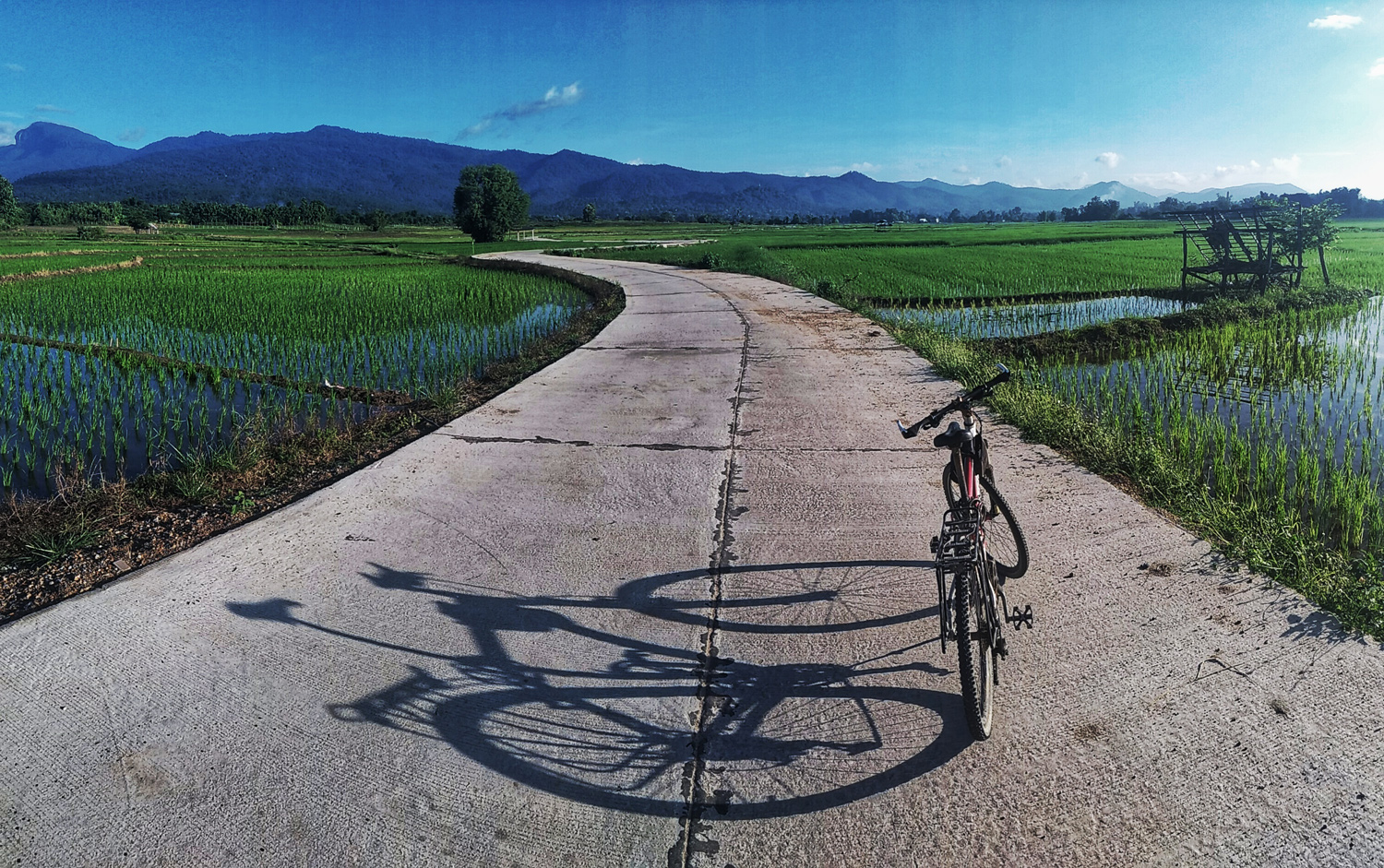 bike on a path with a shadow - Pros and Cons of Upgrading from a Phone to a Real Camera