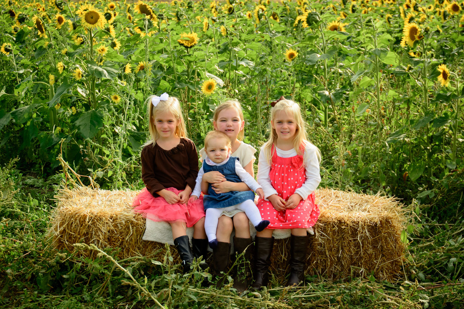 Family photo tips - siblings