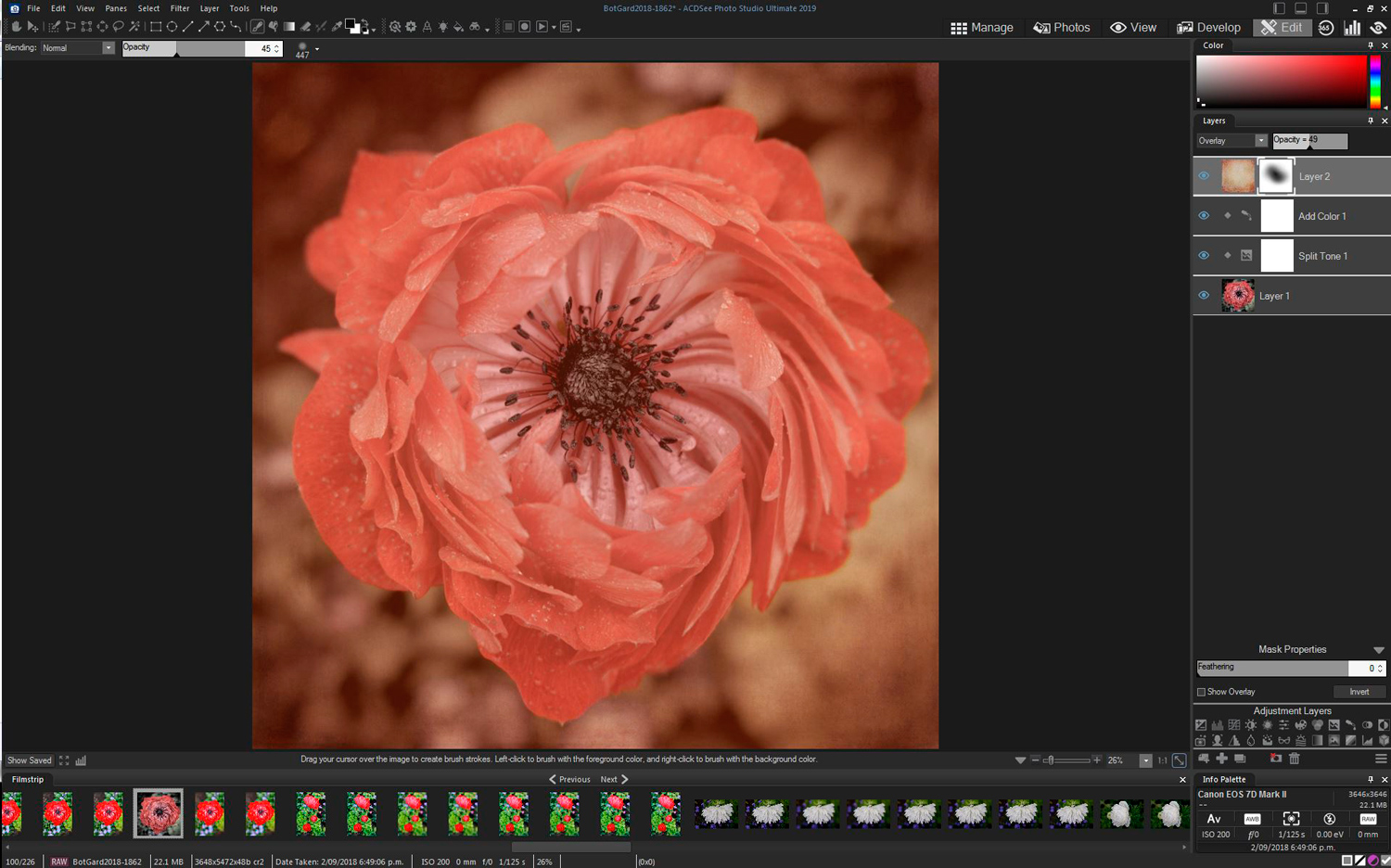 16 - ACDSee Photo Studio Ultimate 2019 Review