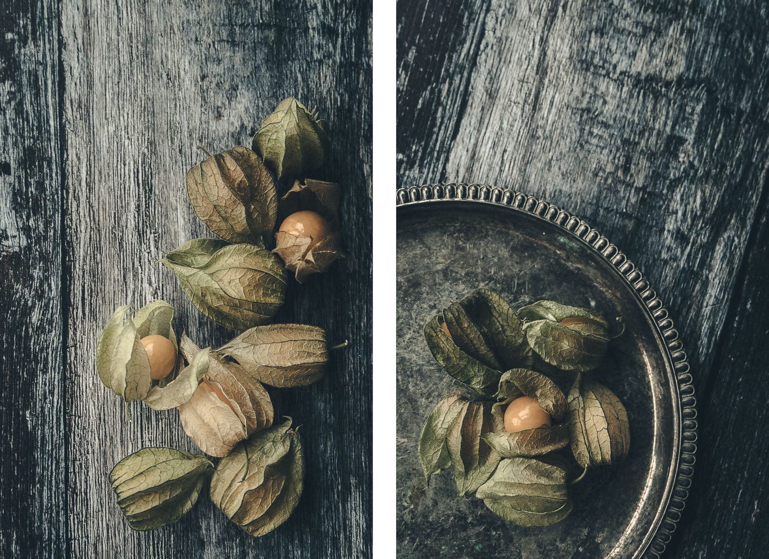Physalis color duo - How to Create Fine Art Images from the Mundane