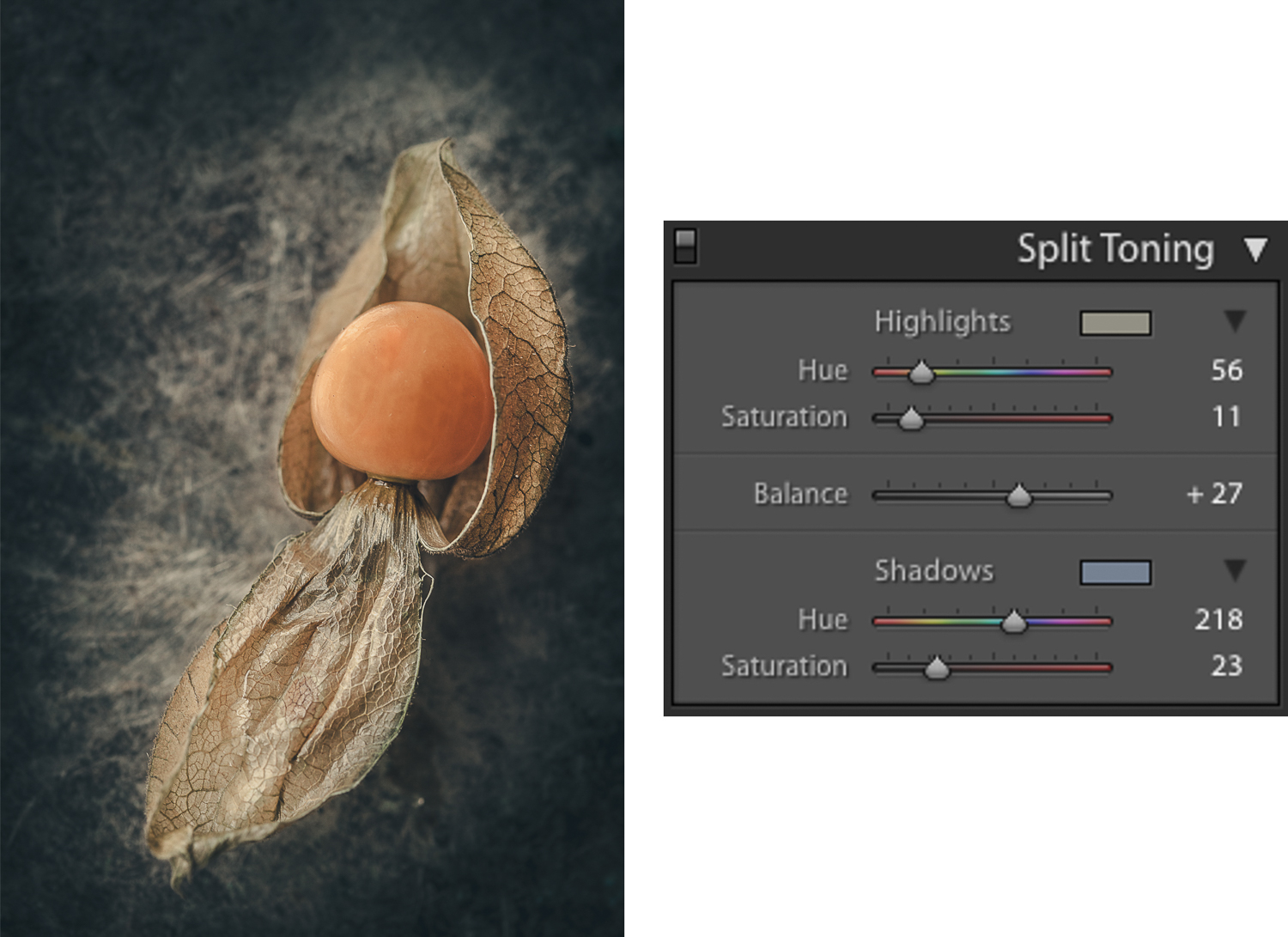 Physalis color lightroom - How to Create Fine Art Images from the Mundane