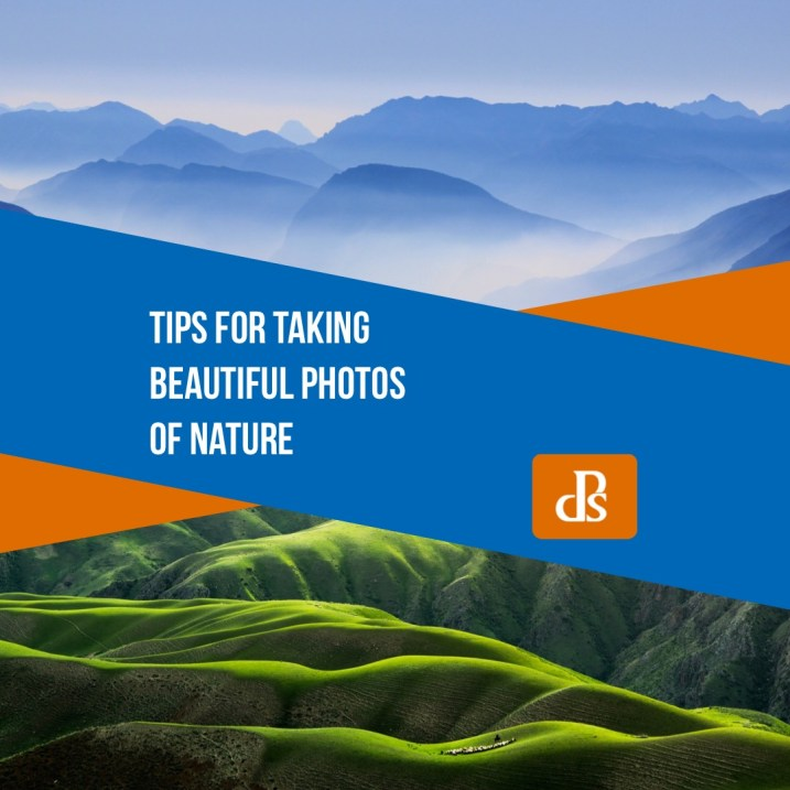 Nature Photography Tips