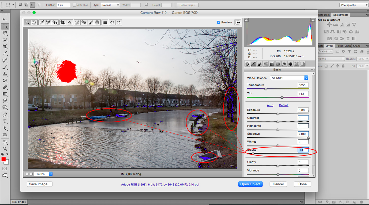 Balance Exposure in Adobe Camera Raw to Improve Your Photographs - Blacks