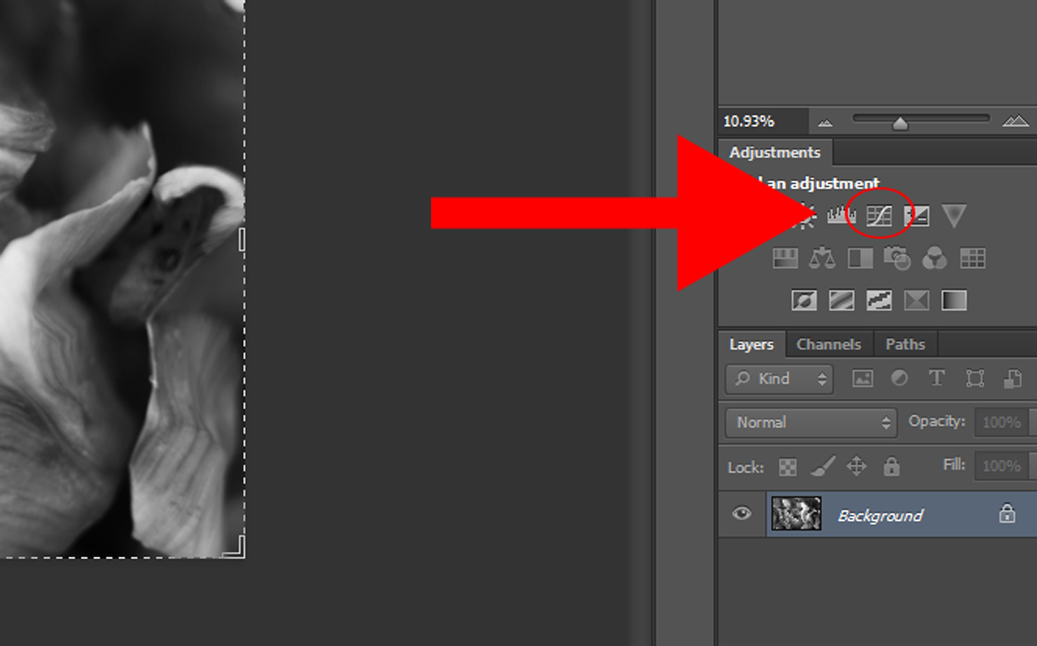 4 - How to Duotone a Photograph in Photoshop