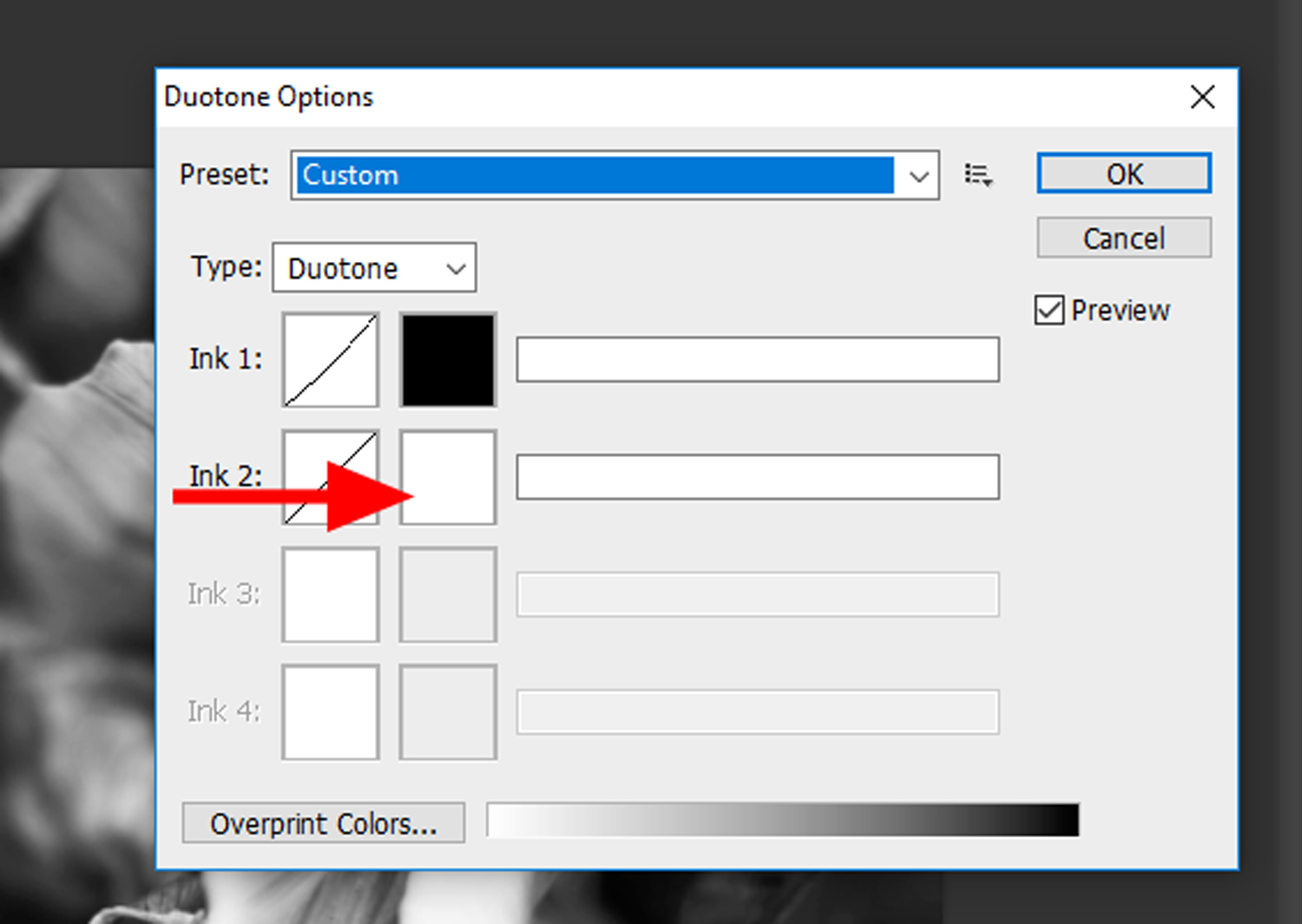 12 - How to Duotone a Photograph in Photoshop