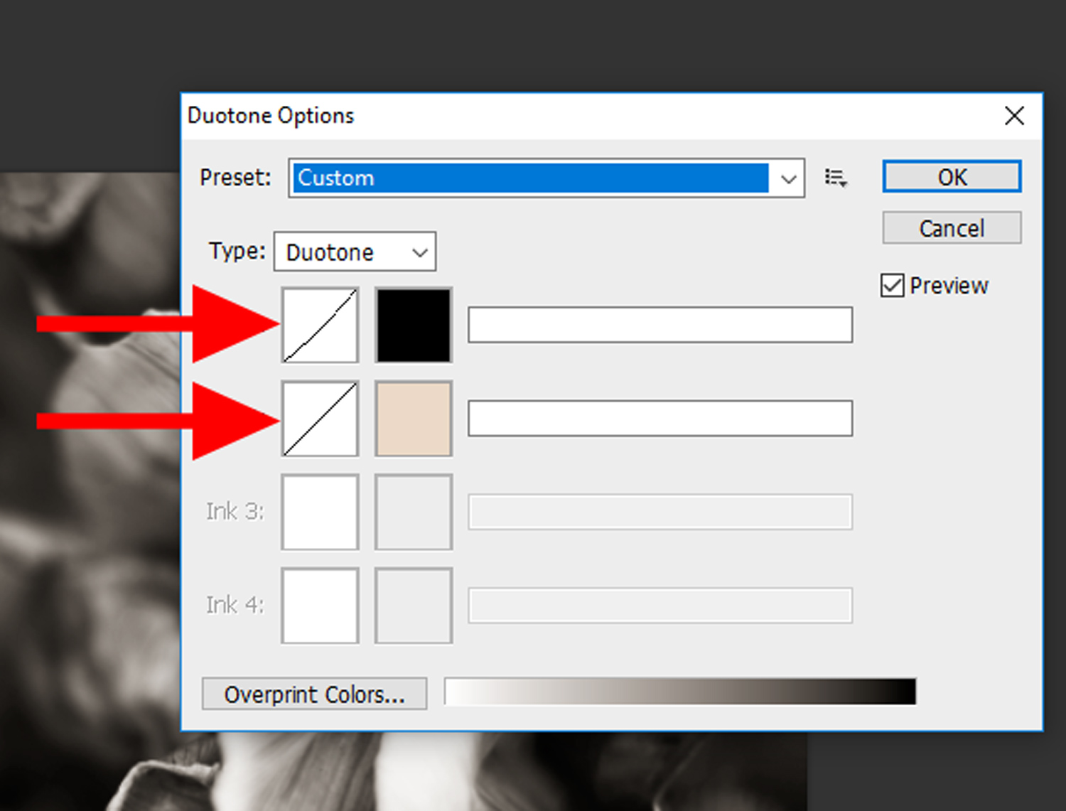 14 - How to Duotone a Photograph in Photoshop