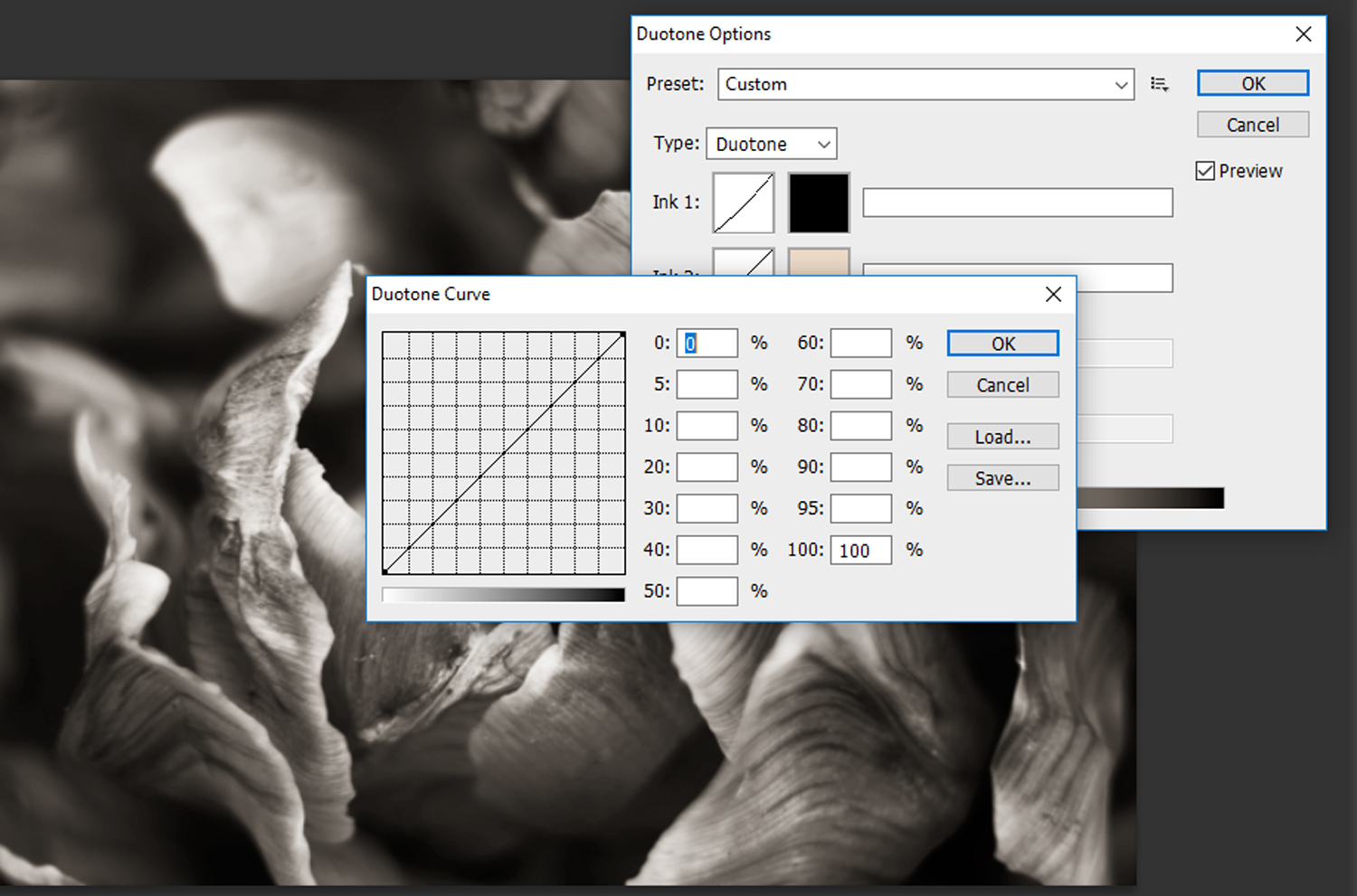 15 - How to Duotone a Photograph in Photoshop