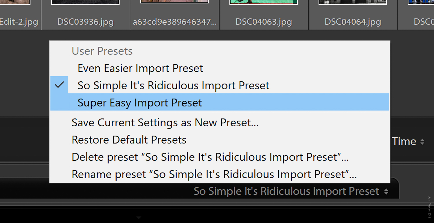How to Use Import and Export Presets in Lightroom Classic CC